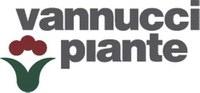 Vannucci piante