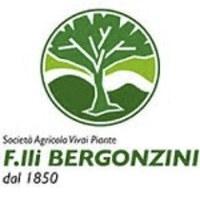 Vivai Bergonzini