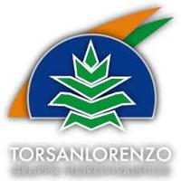 Vivai Torsanlorenzo Gruppo Florovivaistico